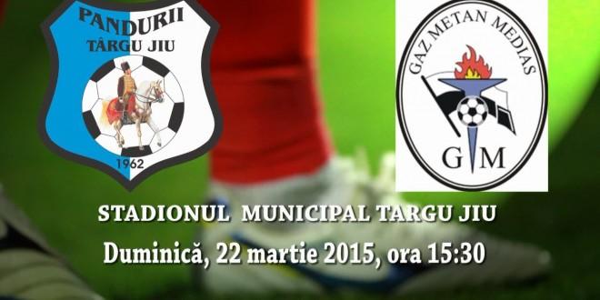 Astăzi s-au pus în vânzare biletele pentru meciul dintre Pandurii Târgu Jiu şi Gaz Metan Mediaş