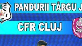 Bilete pentru meciul din etapa a IV-a a Ligii I Orange dintre Pandurii Târgu Jiu şi CFR Cluj