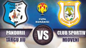 Pandurii Târgu Jiu va întâlni CS Mioveni în faza a patra a Cupei României, miercuri 12 septembrie, ora 16:30