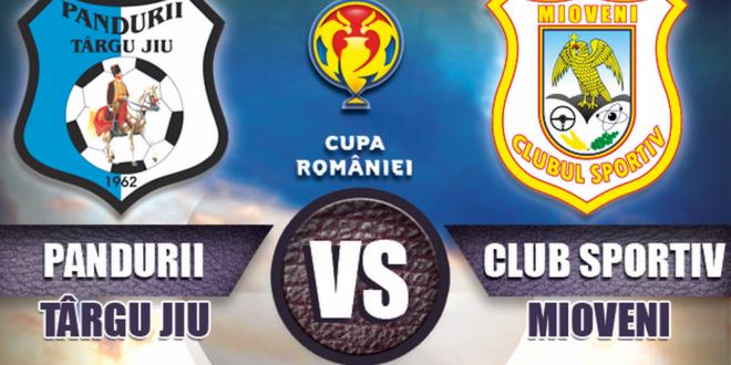 Biletele pentru meciul din Cupa României dintre Pandurii şi CS Mioveni se pot procura azi